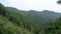 20151010岩茸山-棒ノ折山12