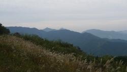 20151010岩茸山-棒ノ折山26