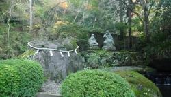 20151121金時山ー阿弥陀寺3