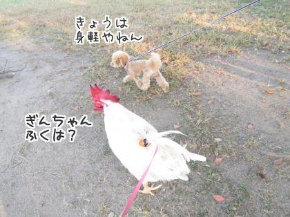 二太2015/10/24-4