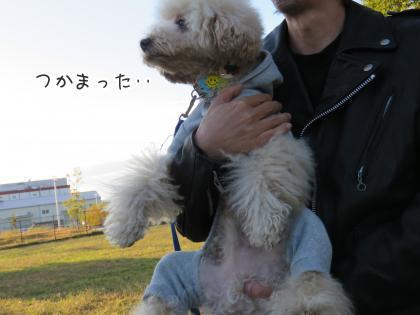 二太2015/11/02-10