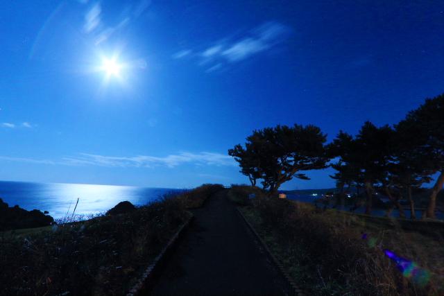 月夜の葦毛崎展望台5