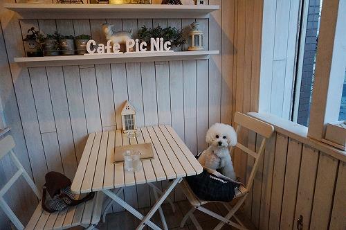 ピクカフェ2