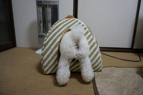 冬ベッド6