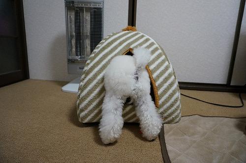 冬ベッド5
