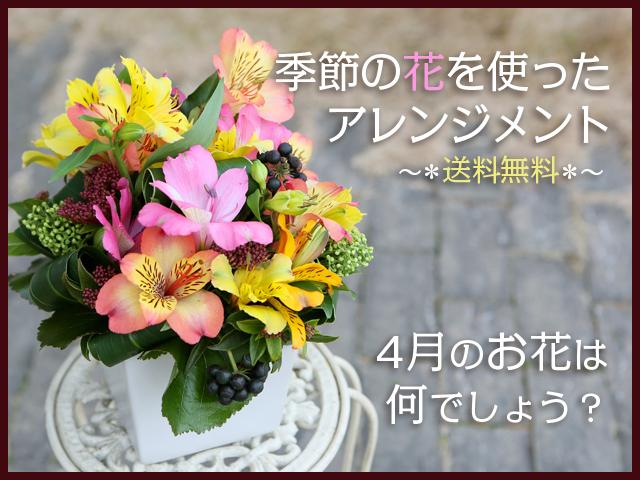 アレンジ お勧め アルストロメリア 季節 春