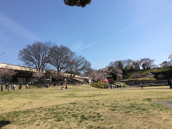 交通事故 病院 前橋 (6)