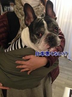 抱っこ (1)