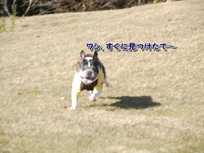 かくれんぼ (7)