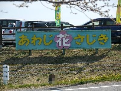 花さじき (2)