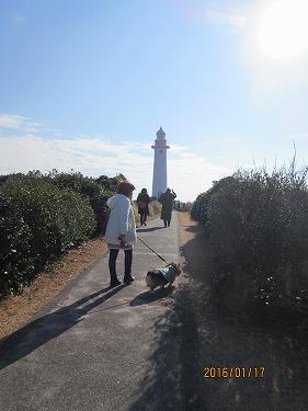 灯台へGO
