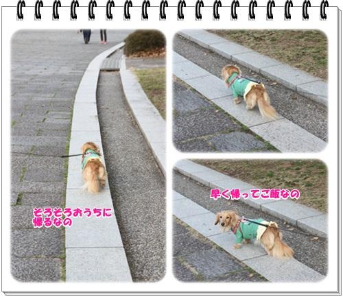 crea160331-10.jpg