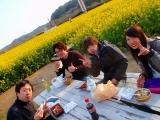 弓ヶ浜菜の花 (3)