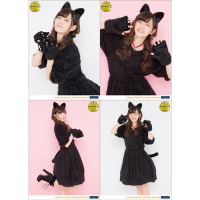 黒ネコ愛理