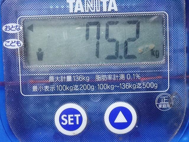 DSC07455.jpg