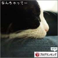 dai20160314_banner.jpg