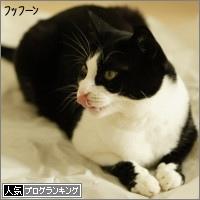 dai20160316_banner.jpg