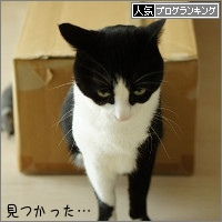 dai20160317_banner.jpg
