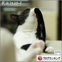 dai20160322_banner.jpg