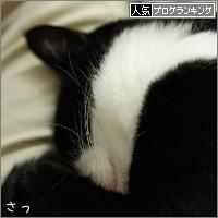 dai20160330_banner.jpg