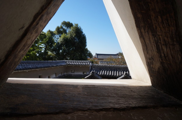 三角小窓からの眺め