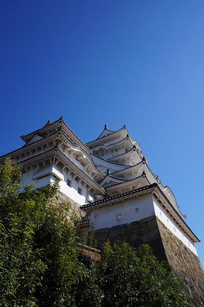 斜め下から見た姫路城