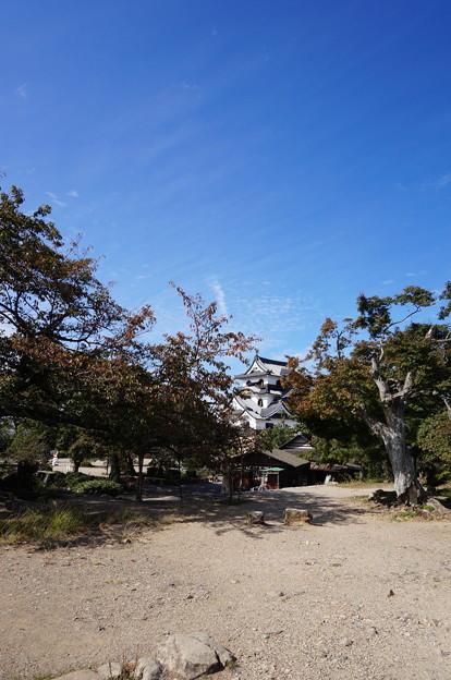 着見台から見た彦根城