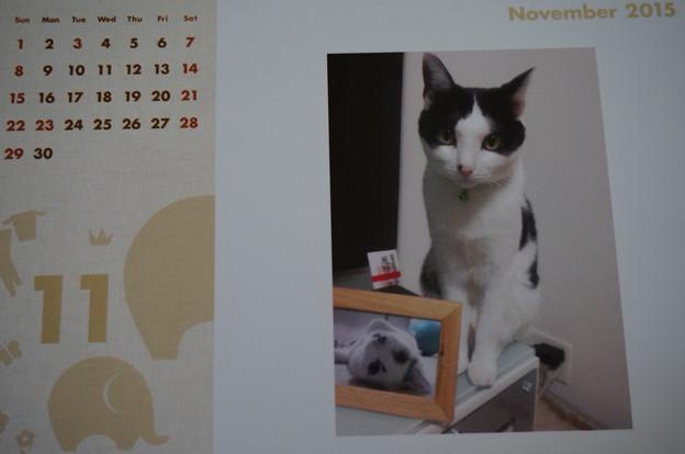 2015.11のカレンダー