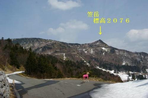 日本のマチュピチュ3