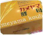 亀山堂 / カメヤマ酵母