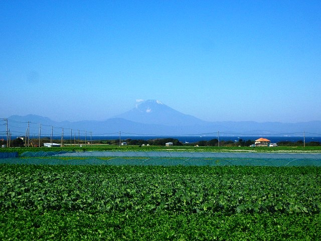 dawnblueⅡ三浦半島各所より富士山撮影Comments