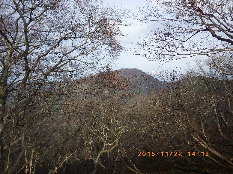 木々の梢越しに百里ヶ岳