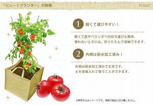 green0401_2016_3.jpg