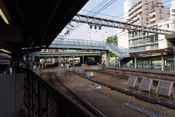 20151018_yoyogi_hachiman-04.jpg