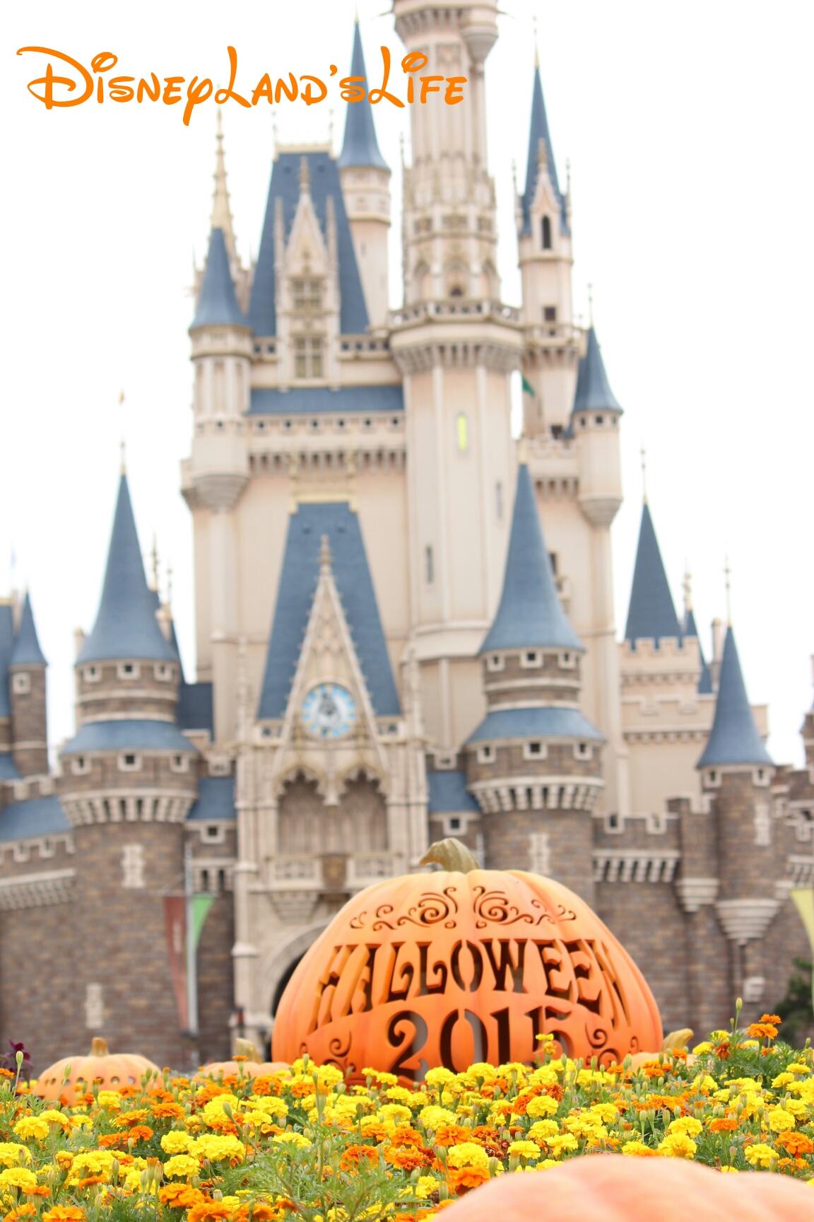 Halloween2015_062.jpg