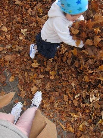 公園で落ち葉あそび