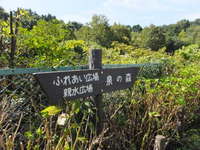 引地川・草柳4号橋の道標