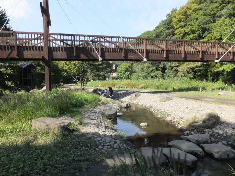 泉の森・遊びの小川と緑の架け橋