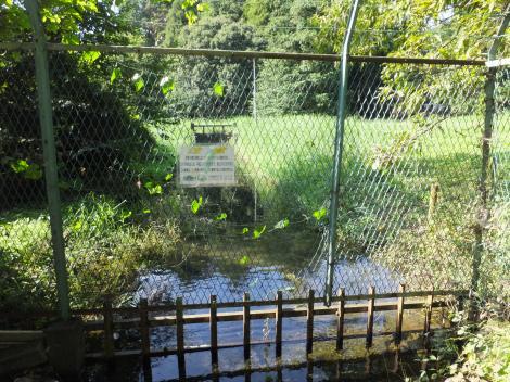 泉の森引地川水源地