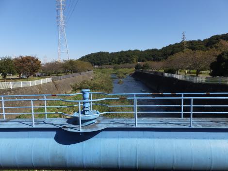 引地川・天神橋より上流を望む