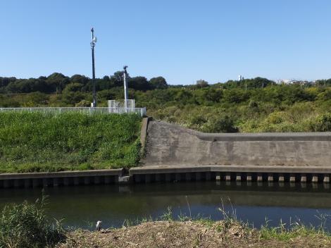 大庭遊水地越流堤