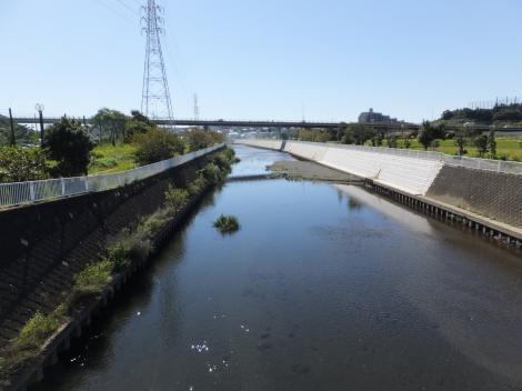 城下橋より引地川下流を望む