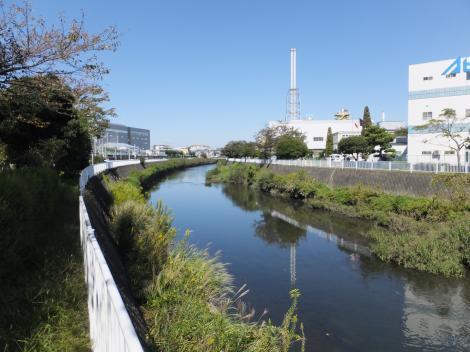東海道本線北側より引地川上流を望む
