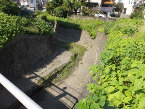 境川旧河道・鶴金橋付近