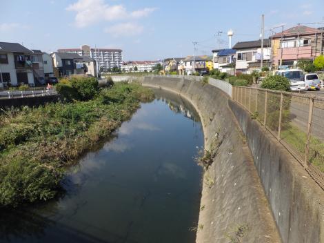 鶴金橋より境川上流を望む