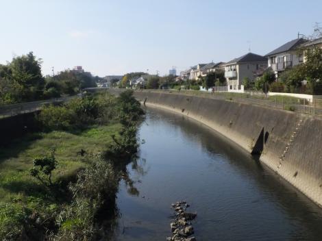 高木橋より境川上流を望む