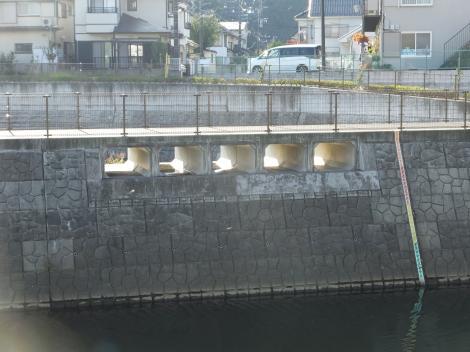 境川鶴間一号橋付近の遊水池