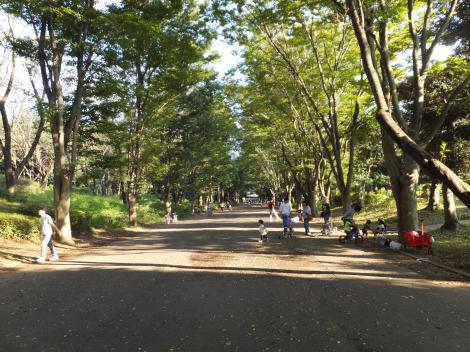 鶴間公園内横浜水道みち
