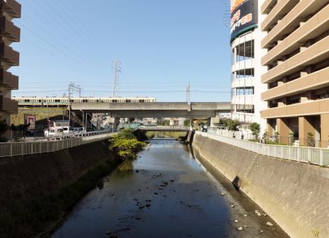 谷口橋より境川上流を望む