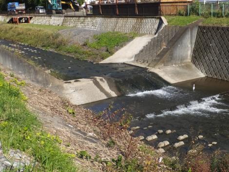 境川・根岸橋上流の床固工